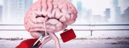«Утечка мозгов» из России, как удержать специалистов?