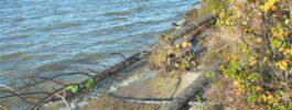 Берег без надежды: почему уровень воды в Байкале достиг критической отметки